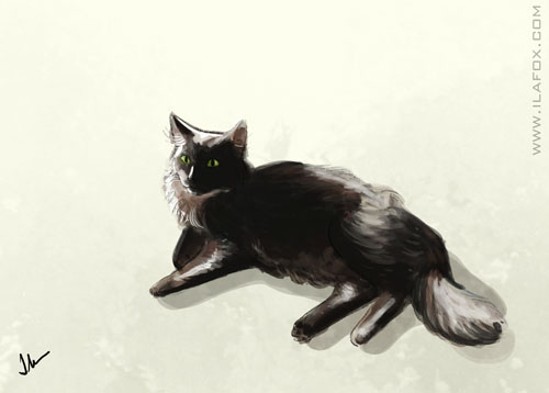 30 Day Drawing Challenge, fav animal, Desafio dos 30 dias de desenho, animal favorito, pintura gato, gato preto, by ila fox
