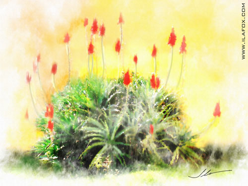 pé de babosa, aloe vera, pintura em aquarela digital by ila fox
