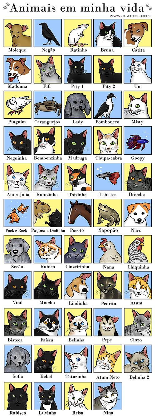 animais de estimação em minha vida, nome de animais de estimação, gatos, cachorros, esquilos mongólia, cavalo, galinha, gambá, sapo, rato, pássaro, pombo, peixes, lebistes, peixe beta, peixe dourado, caranguejos, ilustração by ila fox