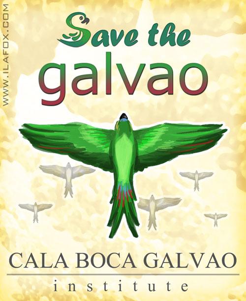 cala boca galvao, cala boca galvão, save the galvao birds ilustração ila fox