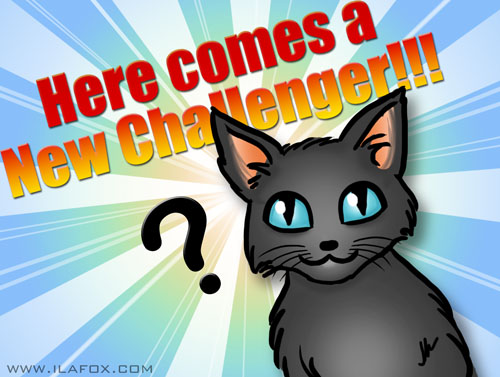 Here comes a new challenger, new cat, by ila fox