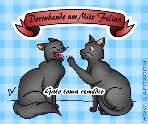 dar remédio para gatos, mito felino, ilustração by ila fox