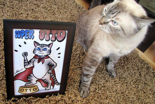 O Super gato herói Otto da Anita Dutra com o seu retrato feito por ila fox