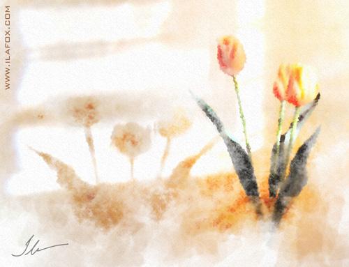tulipas no sol da manhã da casinha tomazina, pintura em aquarela digital by ila fox