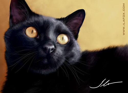 Ilustração animais de estimação, gato preto vinil viniculo ilustração realista chat noir