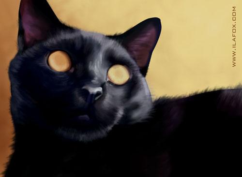 gato Vinil ilustração realista tutorial by ila fox